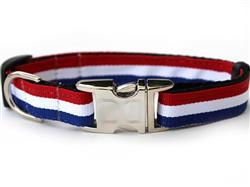 Patriotic Pooch Collar Silver Metal Buckles
