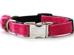 Rosebud Pink Velvet Collar Silver Metal Buckles