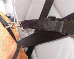 Harness to Seat Belt Attachment