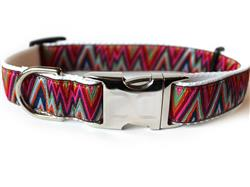 Ziggy Collar Silver Metal Buckles