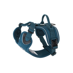 Juniper Active Harness