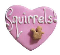 Squirrel Heart