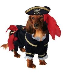 Buccaneer Pirate Costume